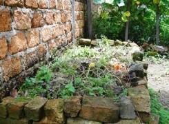 Gardening Fail
